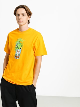 Triu010dko DGK Tropical Fruit (gold)