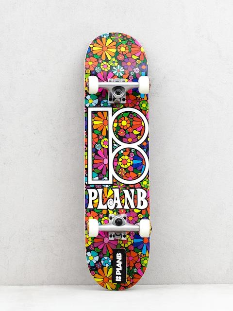 Skateboard Plan B Easy Slider
