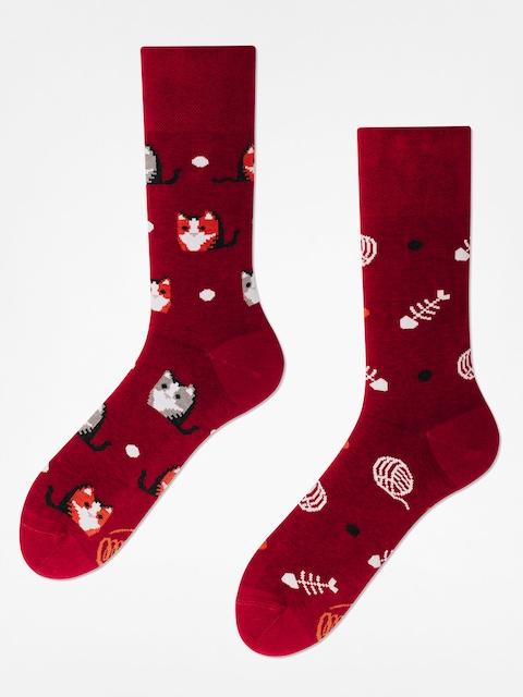 Many Mornings Ponožky Playful Cat (maroon)