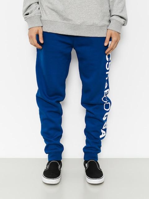 Nohavice DC Clewiston (sodalite blue)
